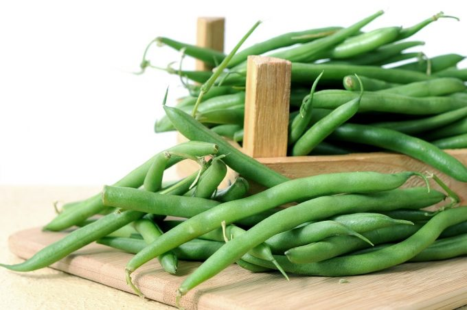 Know more about Bush Beans Vs Pole Beans